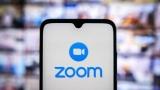 В Минобрнауки оценили последствия блокировки Zoom для вузов