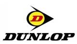 Шины Dunlop зима: отзывы, цены и характеристики