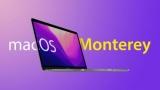 Apple выпустила macOS Monterey beta 8 для разработчиков