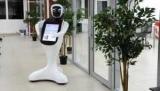 В ростове зоопарк начал работать робот-кассир